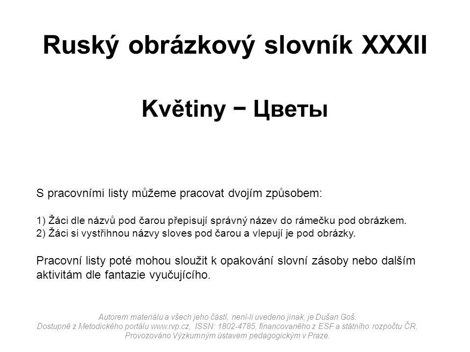 Ruský obrázkový slovník XXXII Květiny − Цветы
