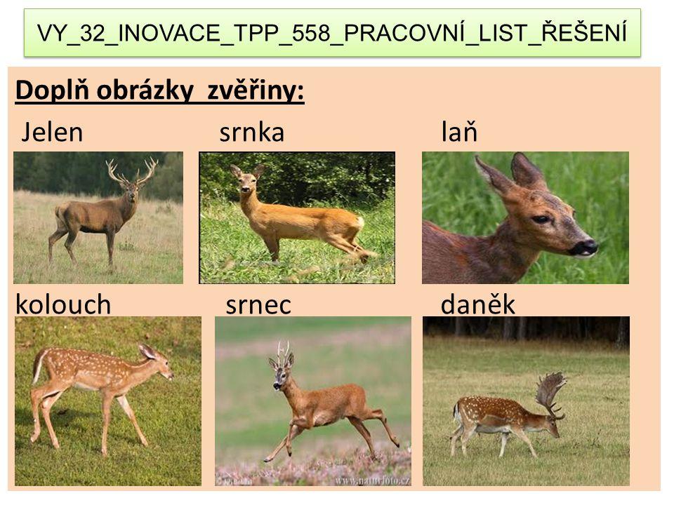 VY_32_INOVACE_TPP_558_PRACOVNÍ_LIST_ŘEŠENÍ