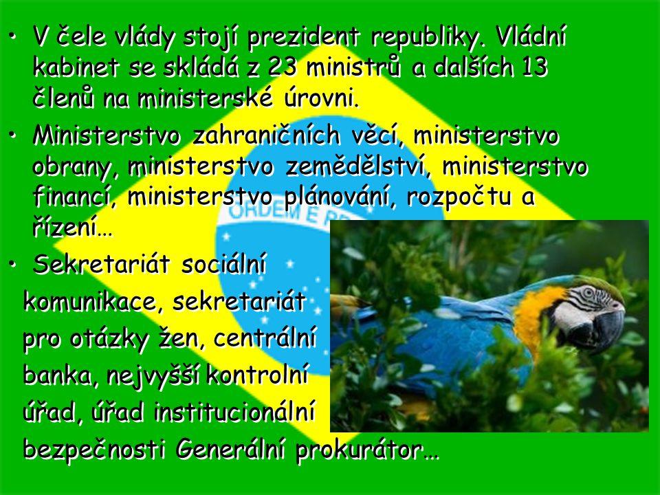 V čele vlády stojí prezident republiky