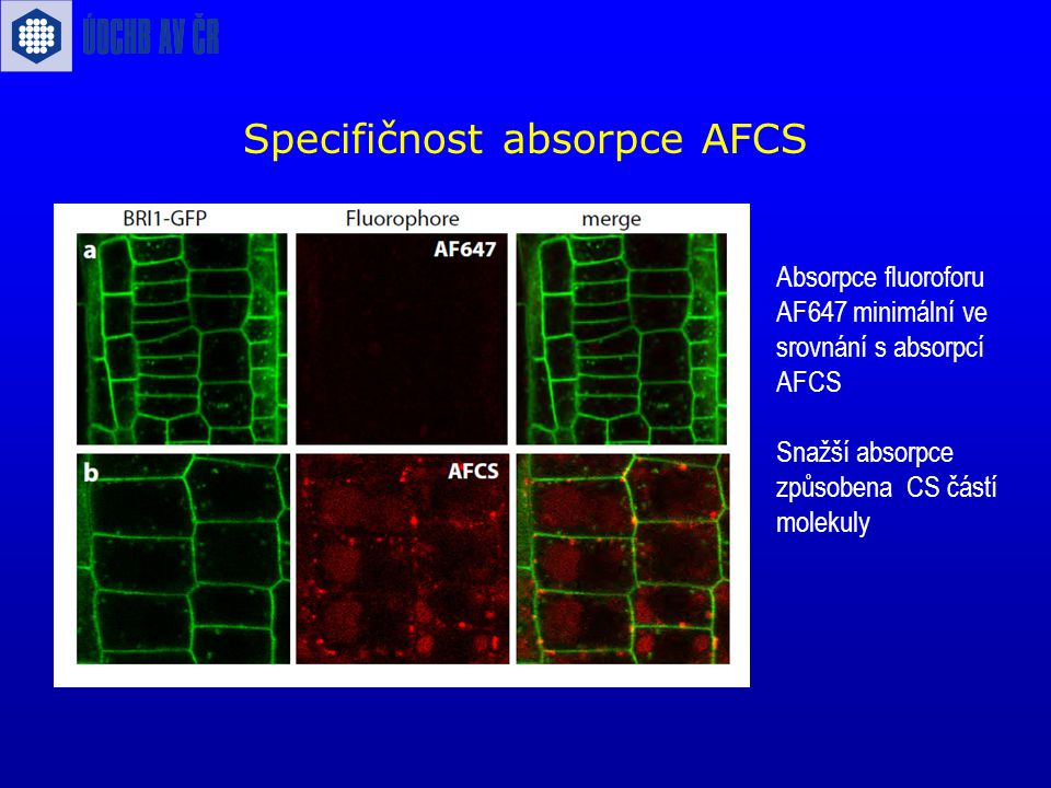 Specifičnost absorpce AFCS