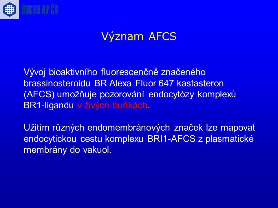 Význam AFCS