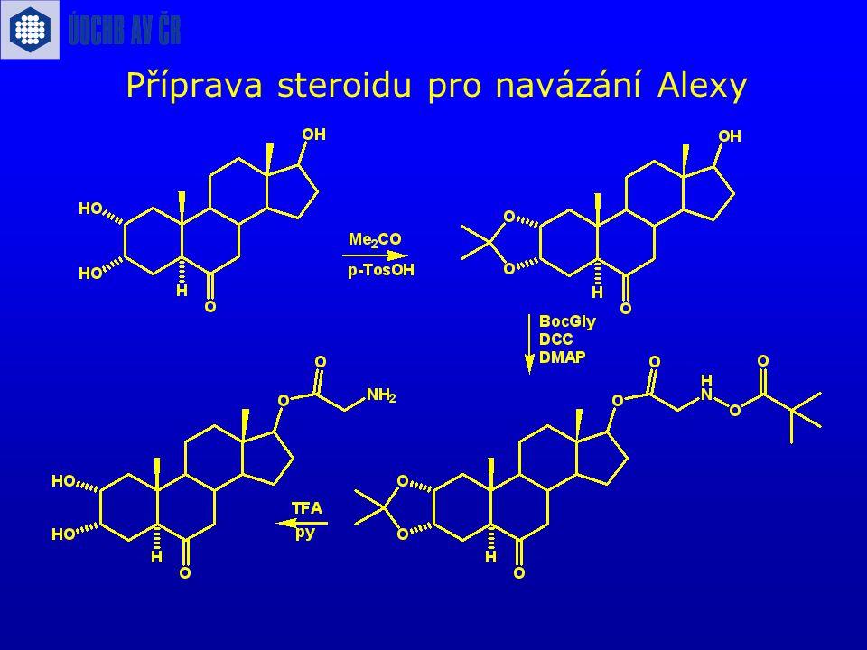 Příprava steroidu pro navázání Alexy