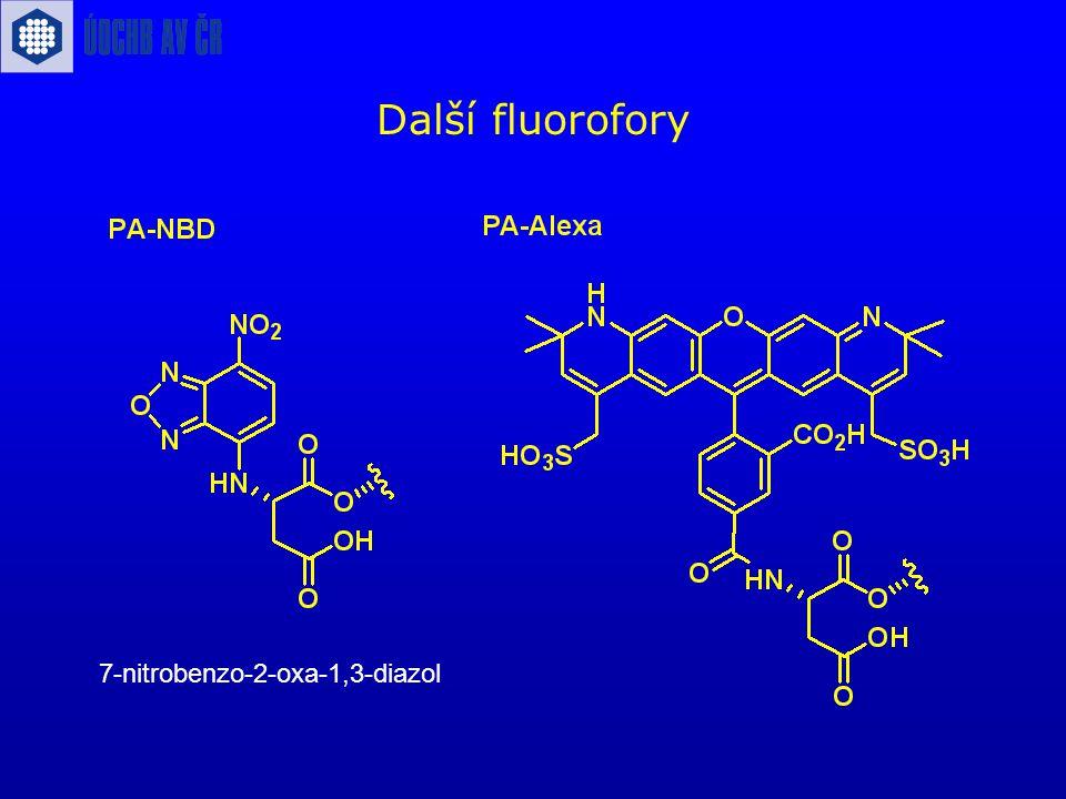 Další fluorofory 7-nitrobenzo-2-oxa-1,3-diazol