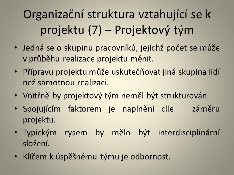 Organizační struktura vztahující se k projektu (7) – Projektový tým