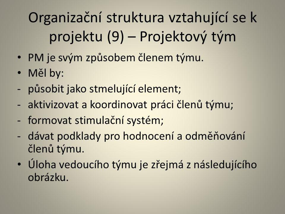 Organizační struktura vztahující se k projektu (9) – Projektový tým
