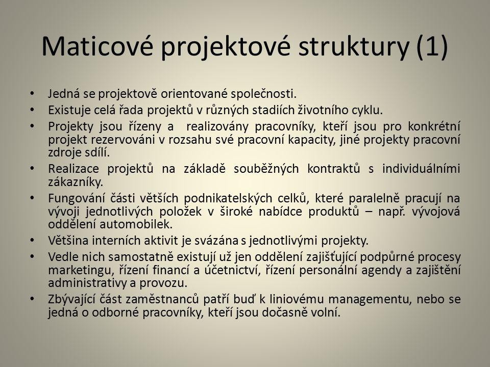 Maticové projektové struktury (1)