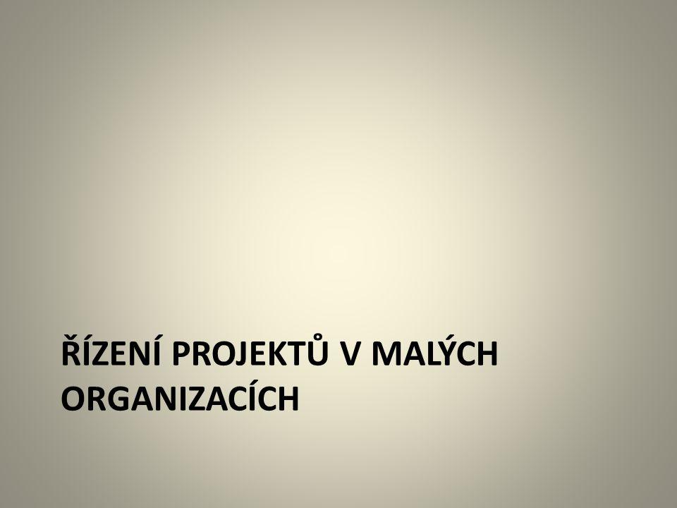 Řízení projektů v malých organizacích