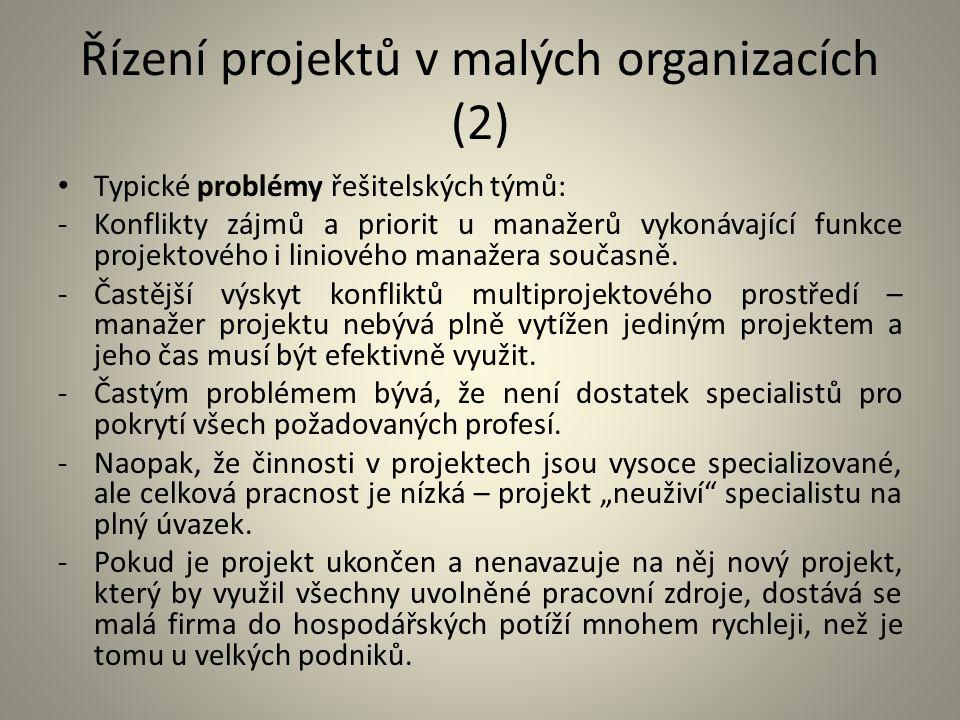 Řízení projektů v malých organizacích (2)