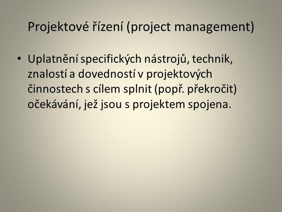 Projektové řízení (project management)