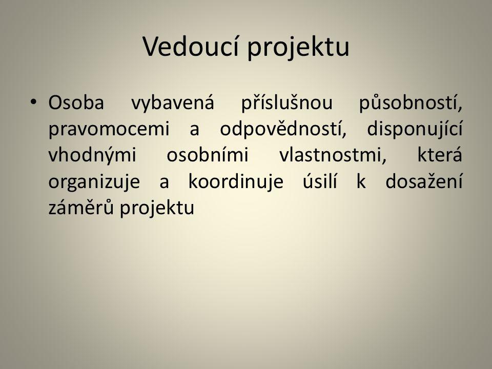 Vedoucí projektu