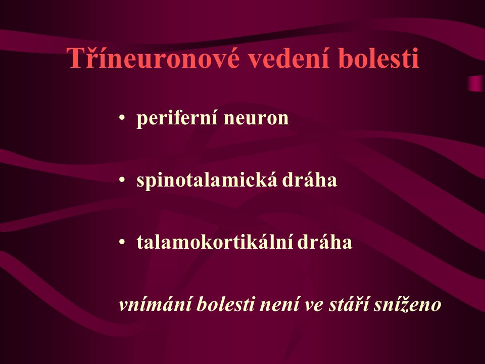 Tříneuronové vedení bolesti