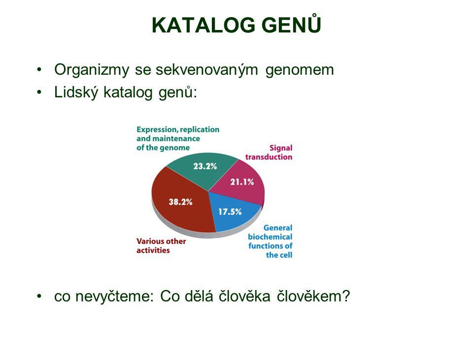 KATALOG GENŮ Organizmy se sekvenovaným genomem Lidský katalog genů: