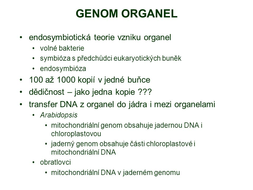 GENOM ORGANEL endosymbiotická teorie vzniku organel