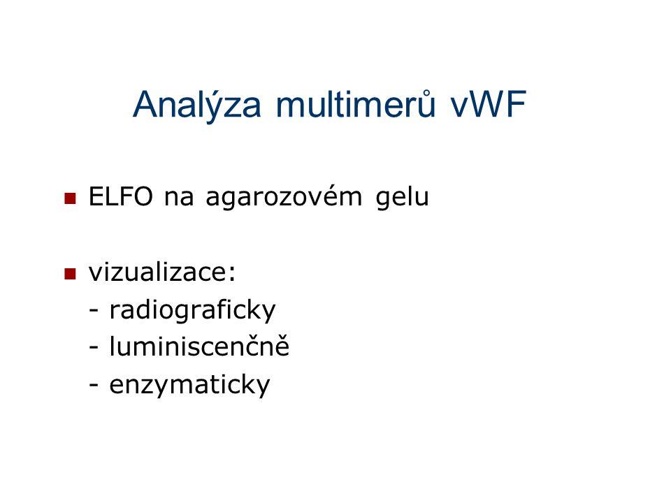 Analýza multimerů vWF ELFO na agarozovém gelu vizualizace: