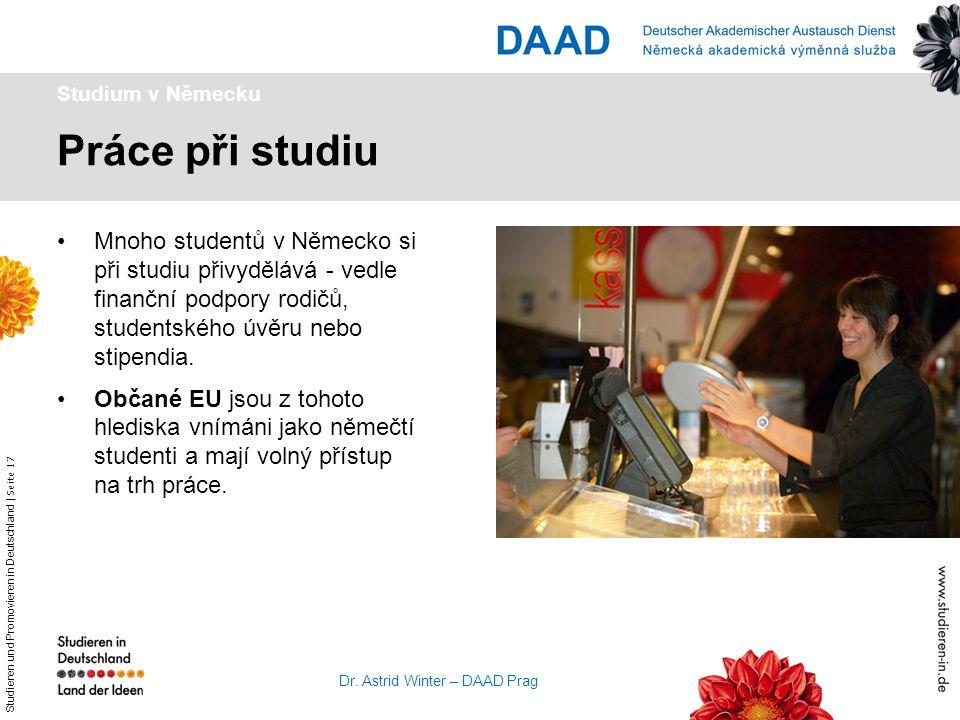 Studium v Německu Práce při studiu.