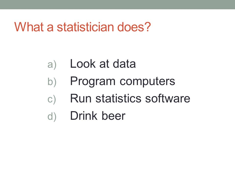 What a statistician does