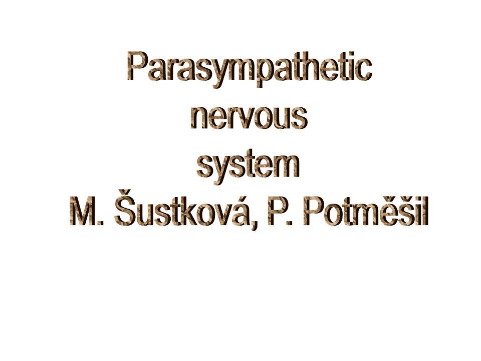 Parasympathetic nervous system M. Šustková, P. Potměšil
