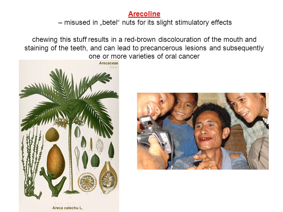 "– misused in ""betel nuts for its slight stimulatory effects"