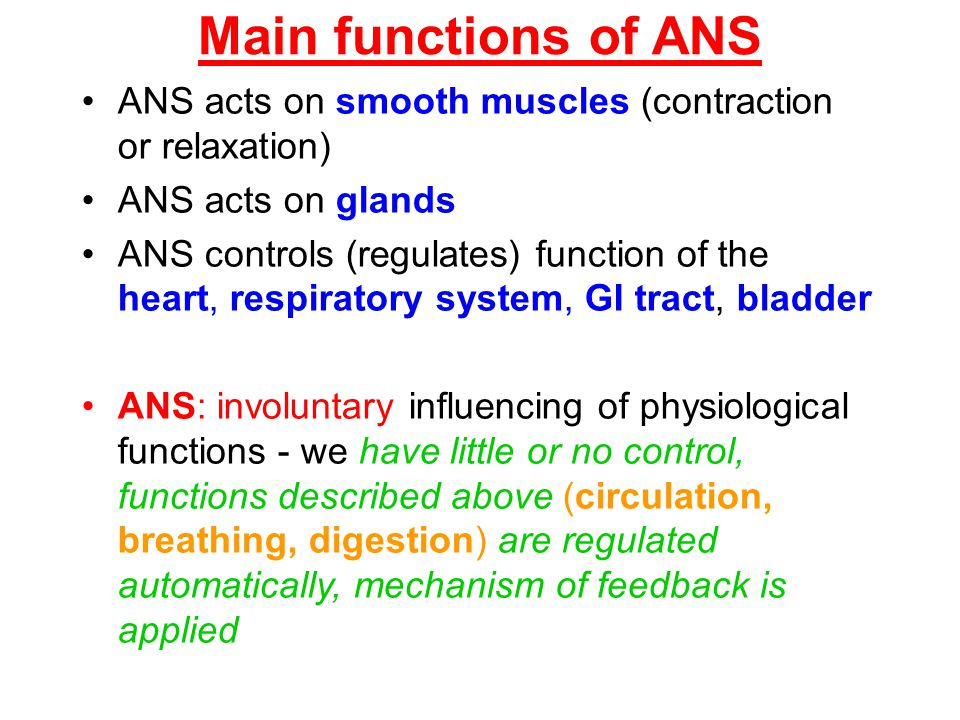 Main functions of ANS ANS acts on smooth muscles (contraction or relaxation) ANS acts on glands.