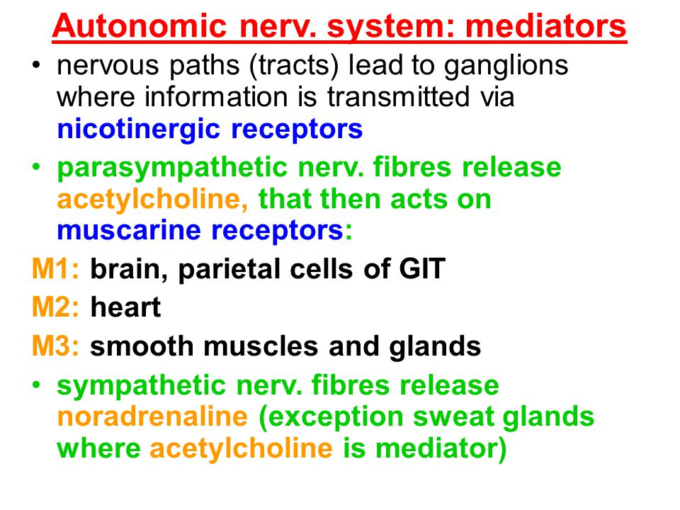 Autonomic nerv. system: mediators