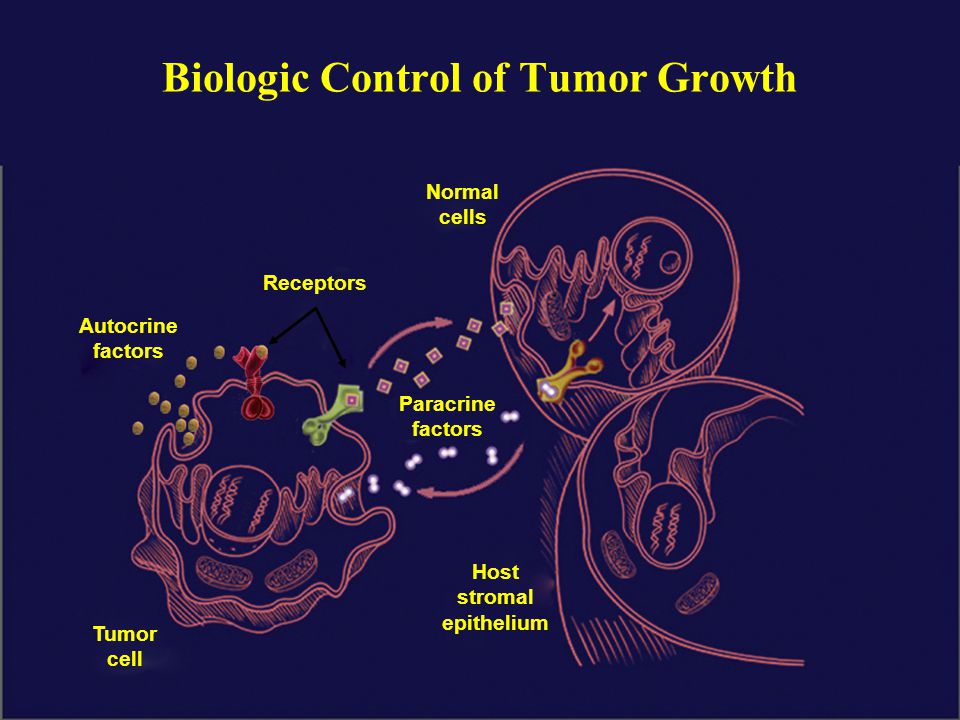 Biologic Control of Tumor Growth