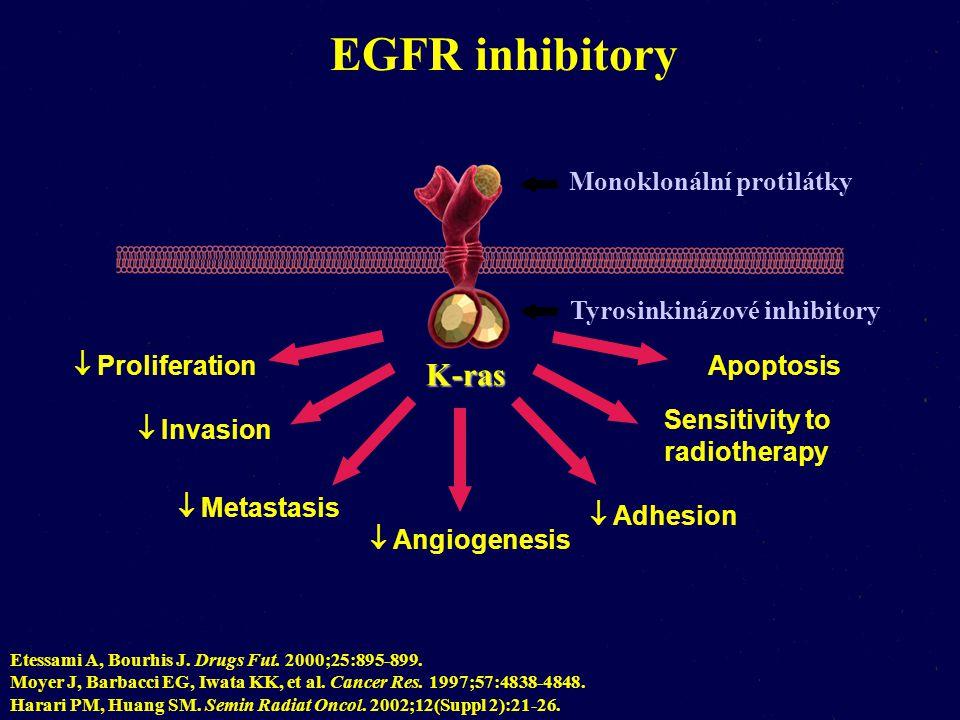 EGFR inhibitory K-ras Monoklonální protilátky