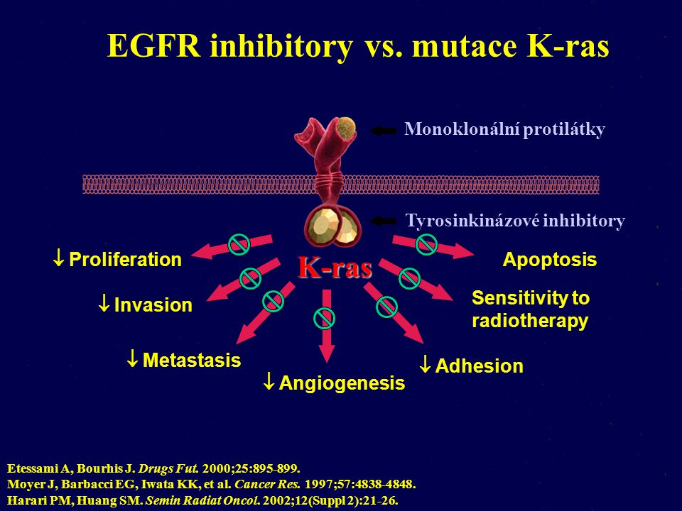 EGFR inhibitory vs. mutace K-ras
