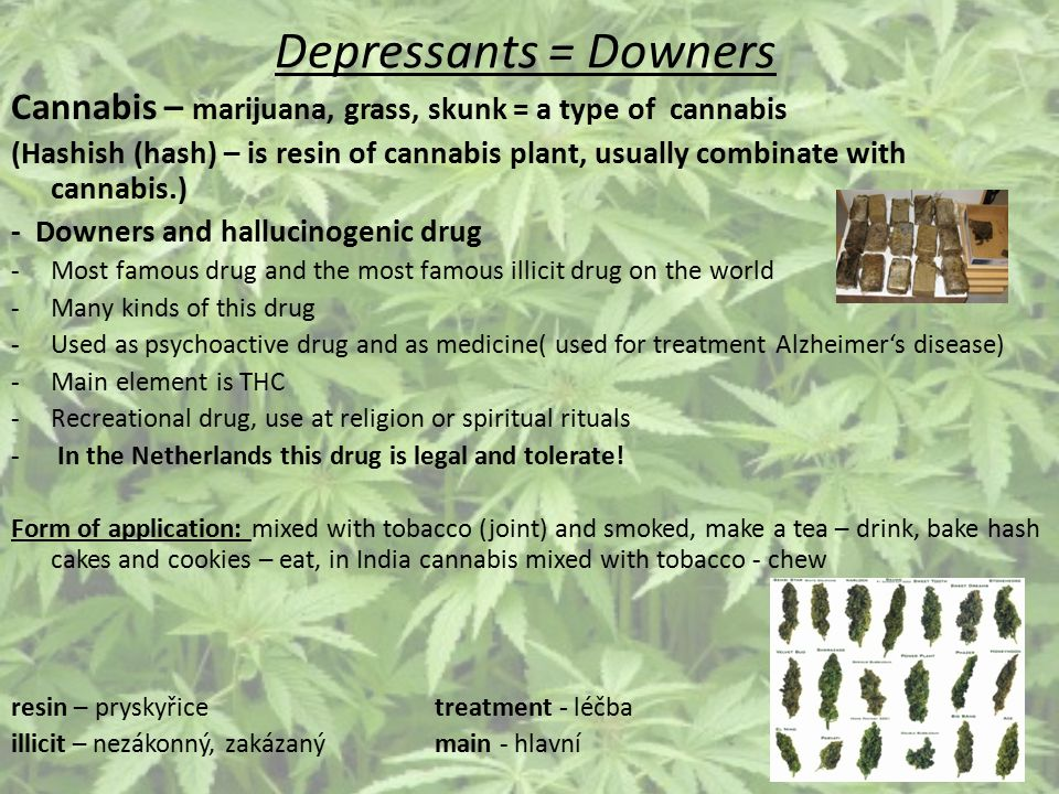 Depressants = Downers Cannabis – marijuana, grass, skunk = a type of cannabis.