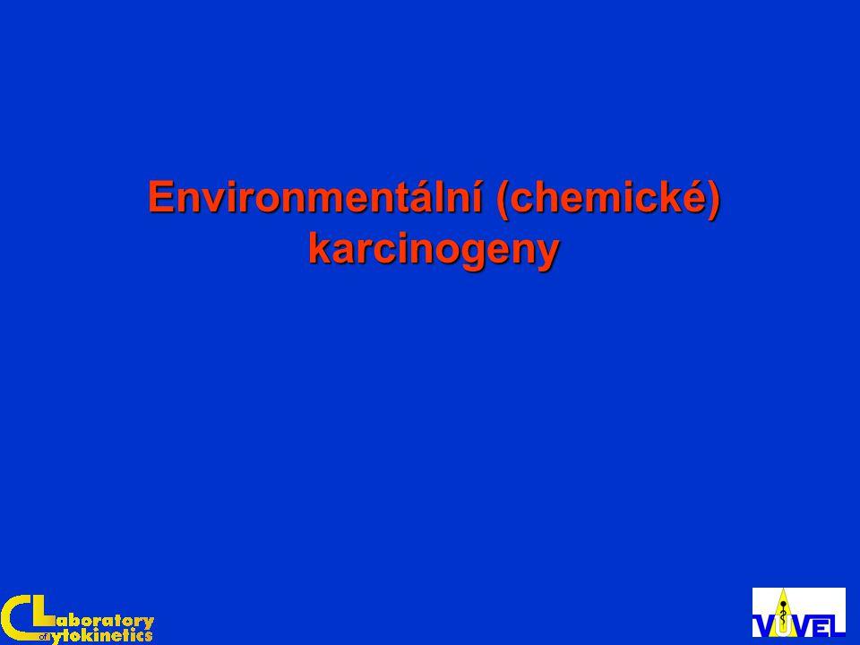 Environmentální (chemické) karcinogeny