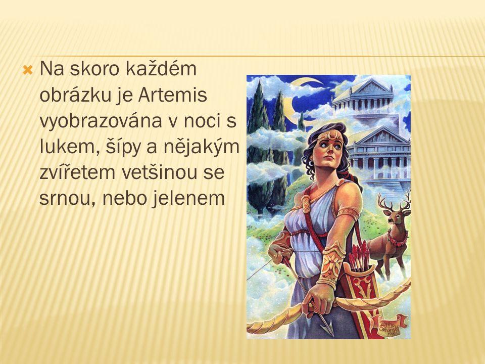 Na skoro každém obrázku je Artemis vyobrazována v noci s lukem, šípy a nějakým zvířetem vetšinou se srnou, nebo jelenem