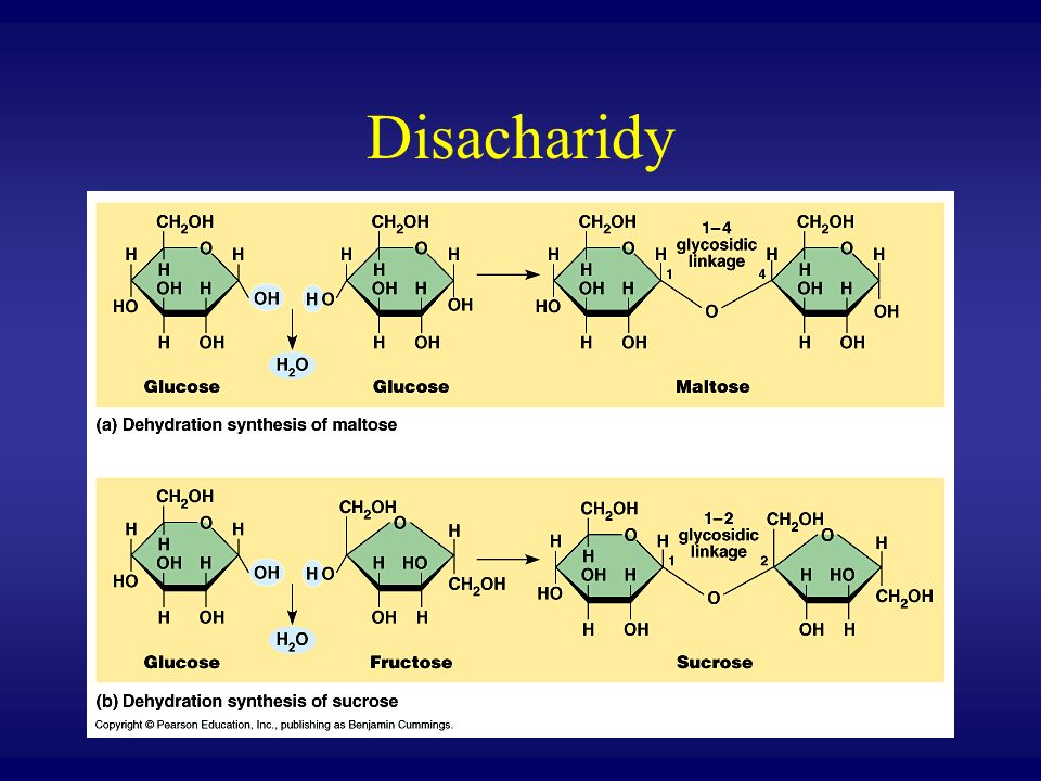 Disacharidy