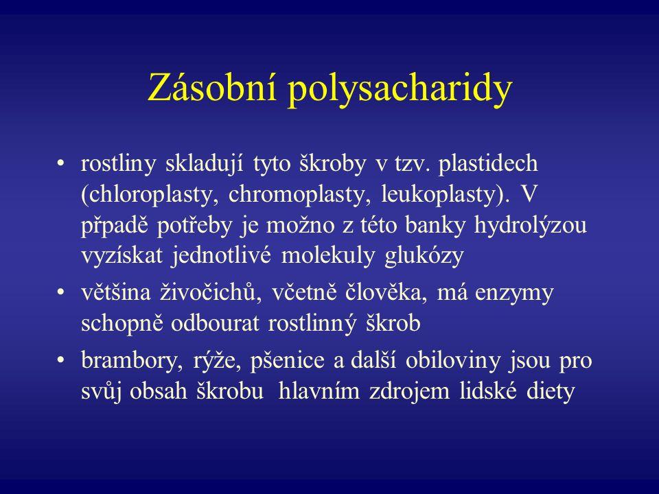 Zásobní polysacharidy