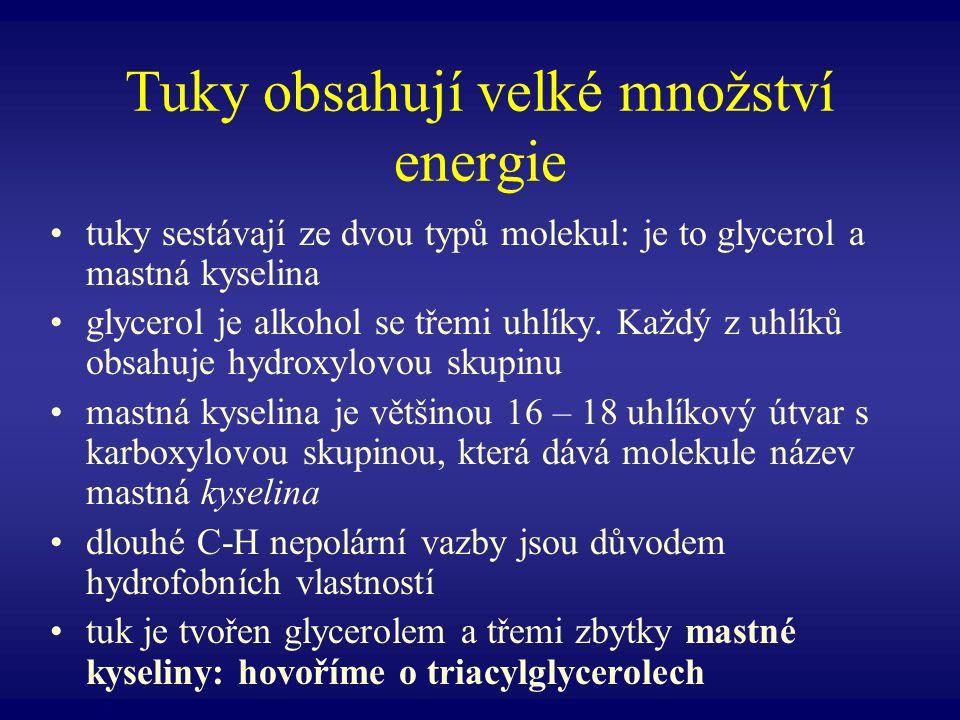 Tuky obsahují velké množství energie