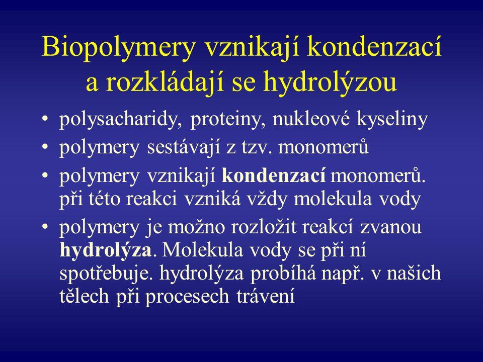 Biopolymery vznikají kondenzací a rozkládají se hydrolýzou