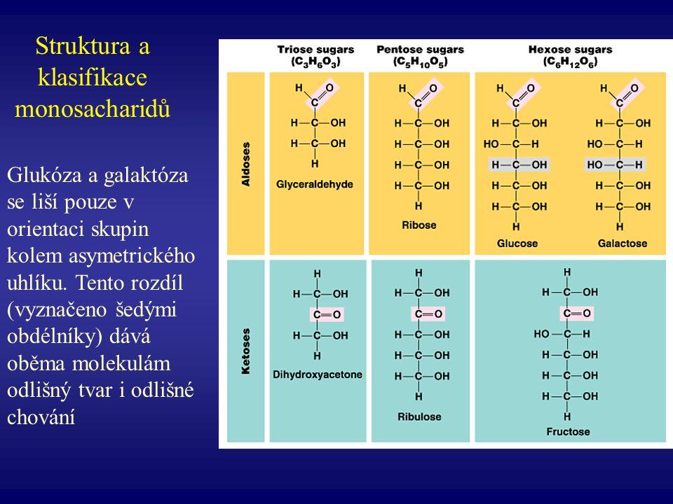 Struktura a klasifikace monosacharidů