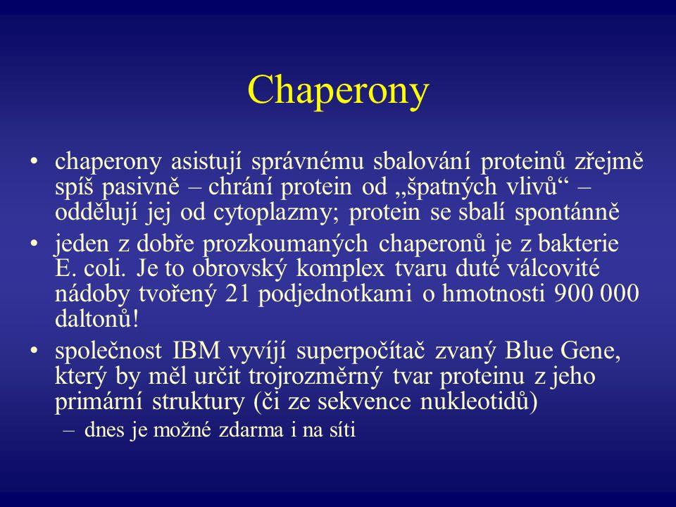 Chaperony