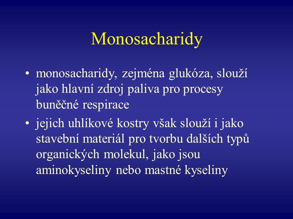 Monosacharidy monosacharidy, zejména glukóza, slouží jako hlavní zdroj paliva pro procesy buněčné respirace.
