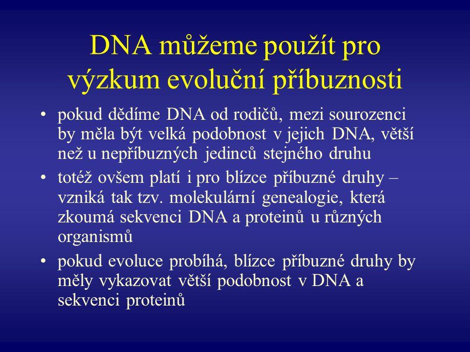 DNA můžeme použít pro výzkum evoluční příbuznosti