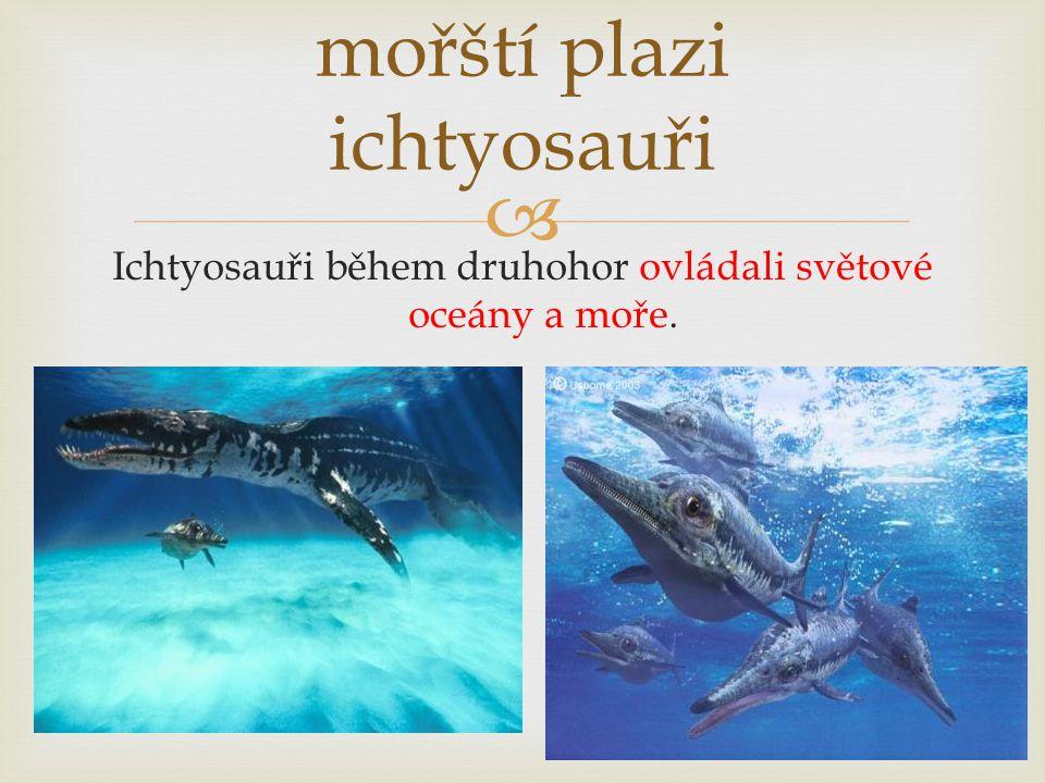 mořští plazi ichtyosauři