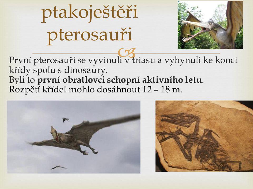 ptakoještěři pterosauři