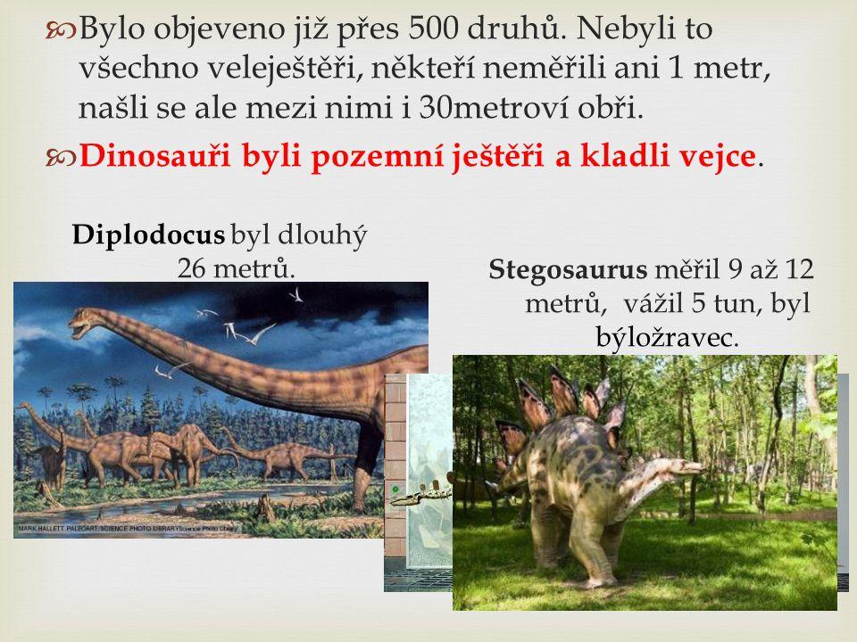 Dinosauři byli pozemní ještěři a kladli vejce.