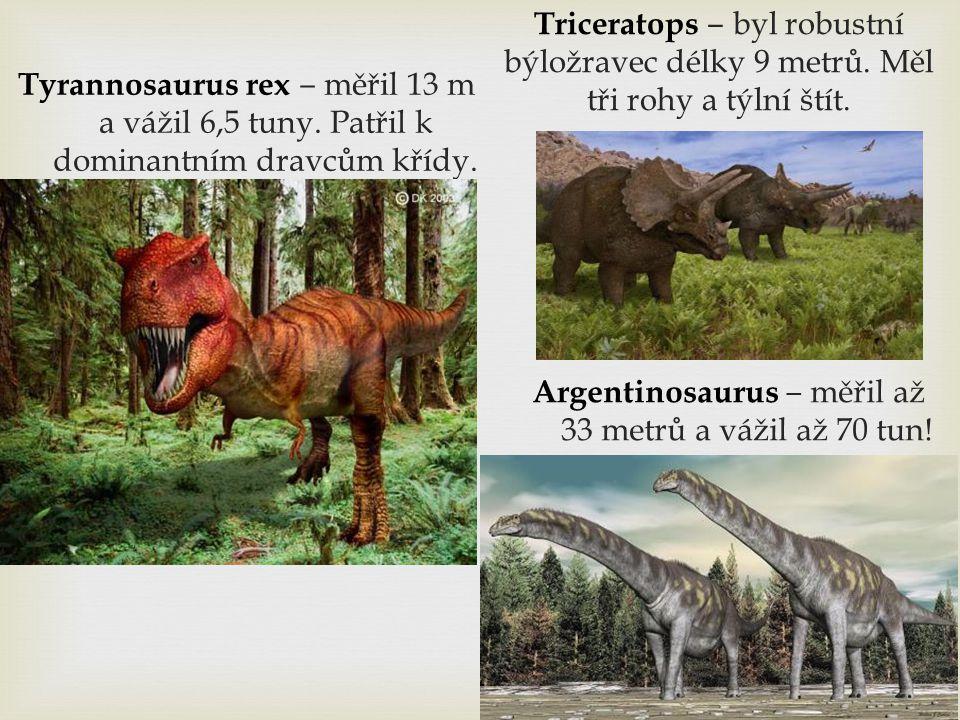 Argentinosaurus ‒ měřil až 33 metrů a vážil až 70 tun!