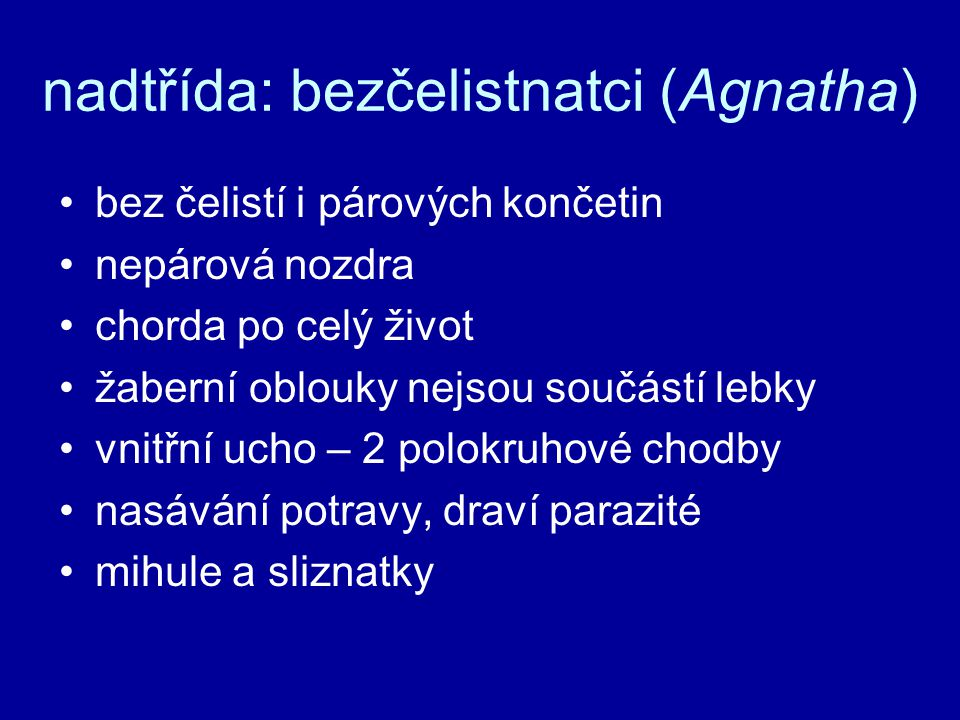 nadtřída: bezčelistnatci (Agnatha)