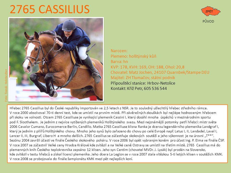2765 CASSILIUS Narozen: Plemeno: holštýnský kůň Barva: hn