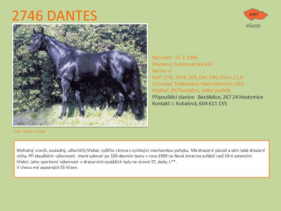 2746 DANTES Narozen: 15.3.1996 Plemeno: hannoverský kůň Barva: vr.