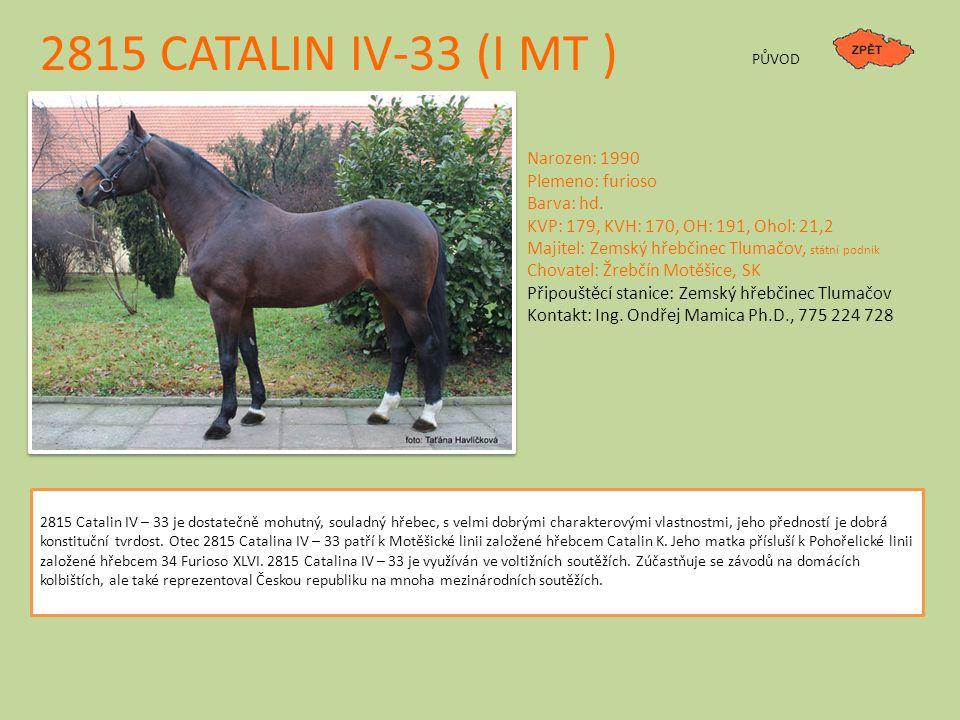 2815 CATALIN IV-33 (I MT ) Narozen: 1990 Plemeno: furioso Barva: hd.