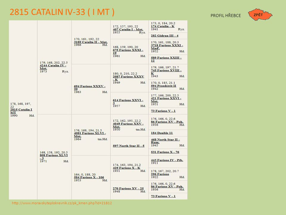 2815 CATALIN IV-33 ( I MT ) PROFIL HŘEBCE