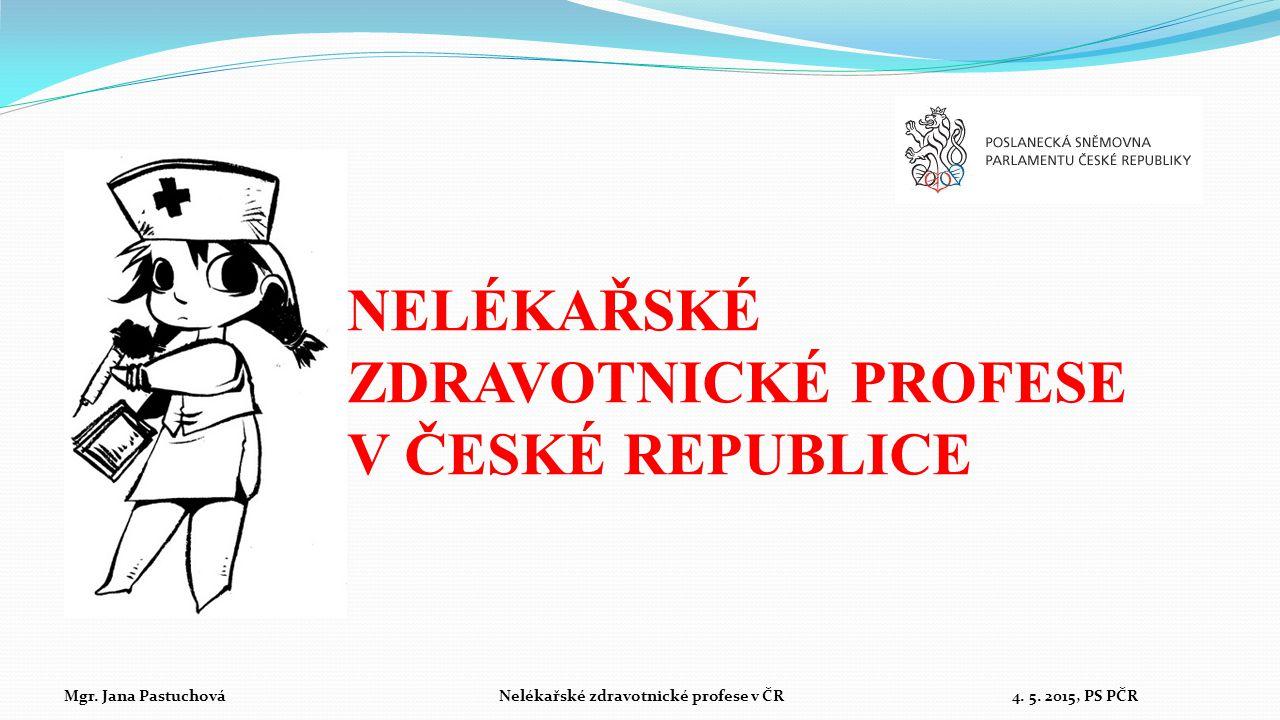 NELÉKAŘSKÉ ZDRAVOTNICKÉ PROFESE V ČESKÉ REPUBLICE