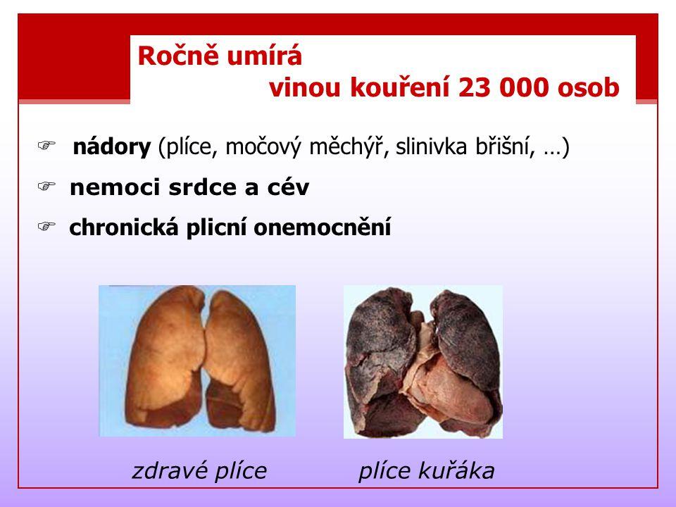Ročně umírá vinou kouření 23 000 osob