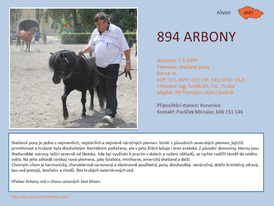 894 ARBONY Narozen: 7.3.1999 Plemeno: shetland pony Barva: vr.